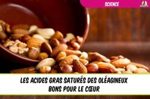 les acides gras saturés des oléagineux bons pour le coeur