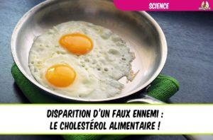 cholestérol alimentaire disparition d'un faux ennemi
