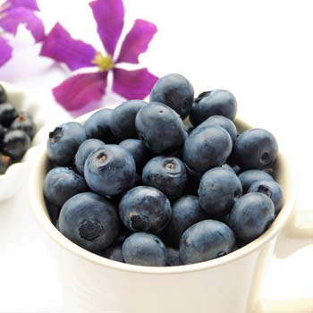 blueberries-2546157_1280-2-3