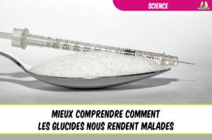 dossier mieux comprendre comment les glucides nous rendent malades