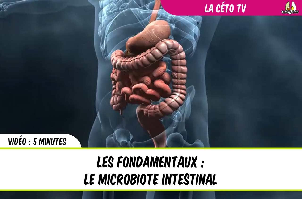 Le microbiote interstinal